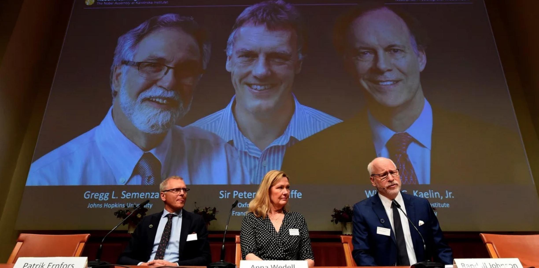 Prémio Nobel de Medicina vai para pesquisa sobre como células percebem oxigénio