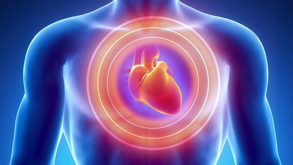 Endocardite: da boca ao coração
