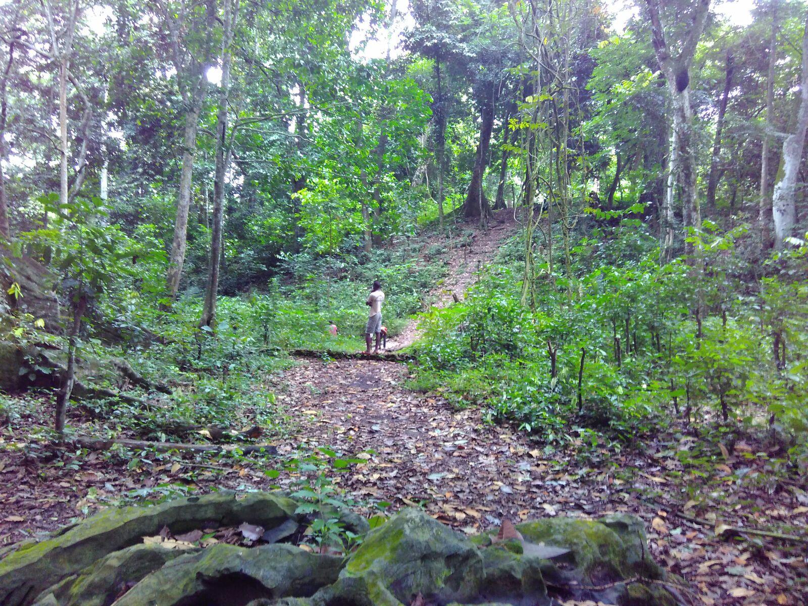 Reserva Florestal do Béu