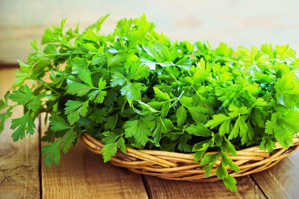 Comer salsa ajuda prevenir o cancro, o envelhecimento precoce e fortalece o sistema imunológico