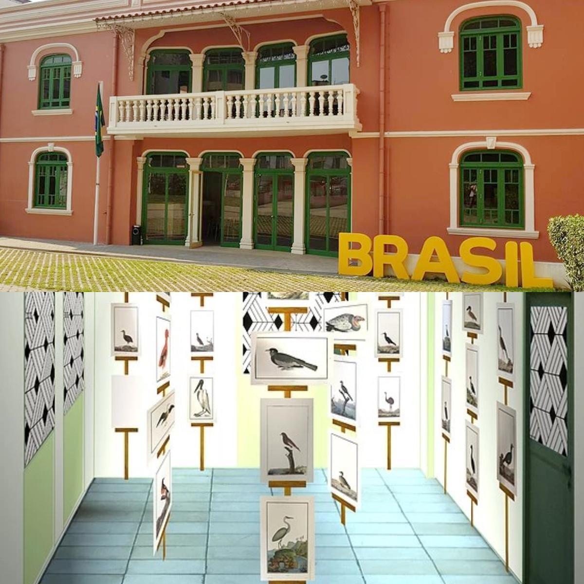 Centro Cultural do Brasil em Angola acolhe exposição virtual