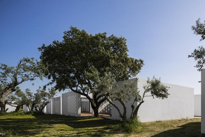 Turismo Rural em Évora, dormir nos campos do Alentejo