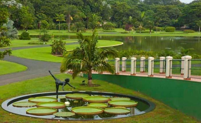 E as crianças? Por que não levá-las ao Jardim Botânico de São Paulo?
