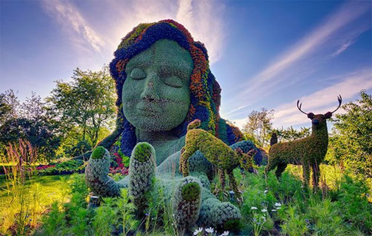 As artes vivas do Jardim Botânico Roger Van den Hende