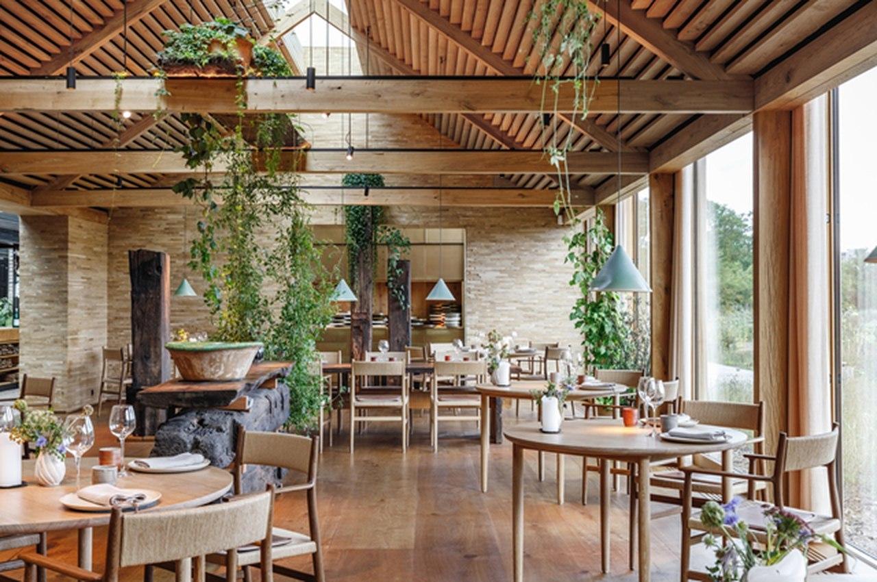 Conheça o restaurante Noma: um dos melhores do mundo
